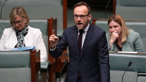 Bandt defends colleague who labelled Labor, Coalition 'arsonists' | Sky News Australia