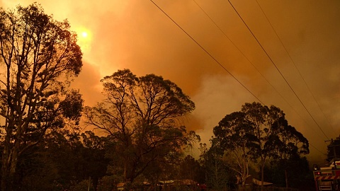 Hundreds of schools shut as SA battles 'catastrophic' fire danger | Sky News Australia