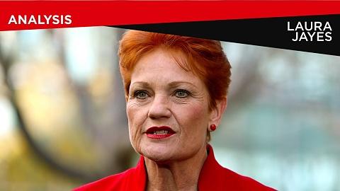 Pauline Hanson needs to explain 'sickening' NRA reports: Birmingham