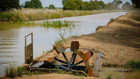 ACCC to examine Murray-Darling Basin water market | Sky News Australia