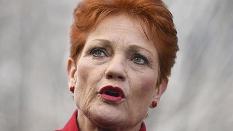 Week in politics: Labor opposes Hanson inquiry role   Sky News Australia