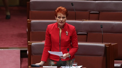 Pauline Hanson would 'love to see Peter Dutton as leader of this nation' if PM faces spill | Sky News Australia