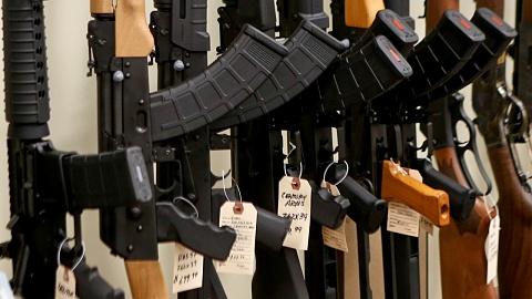One Nation could unravel gun laws: Gun Control Australia