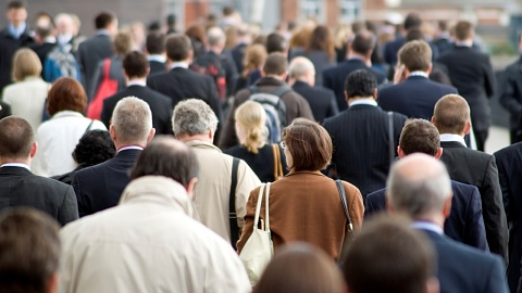 Unemployment rate drops to 5.2 per cent | Sky News Australia
