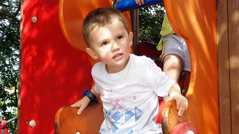 William Tyrell's foster mother breaks down at inquest