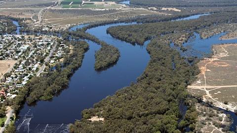 Murray-Darling river system facing 'dire conditions' | Sky News Australia