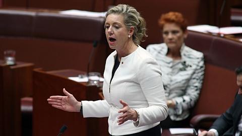 Hanson calls on Bridget McKenzie to resign over dairy code of conduct | Sky News Australia