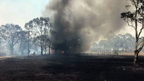 Crews continue to battle fires in northern NSW