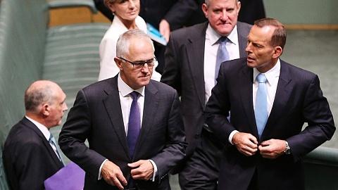 Abbott blames Turnbull's ambition for govt's demise | Sky News Australia