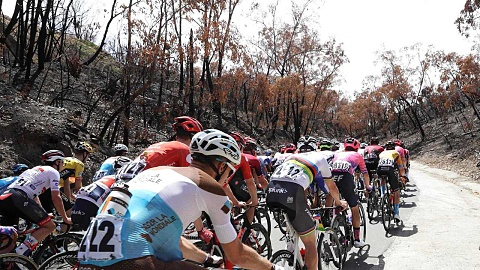 Tour Down Under cyclists describe race through fire-affected SA as 'haunting'   Sky News Australia