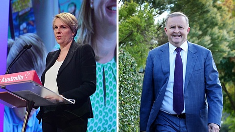 Tanya Plibersek to launch Labor leadership bid   Sky News Australia