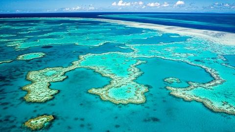 Great Barrier Reef's outlook lowered to 'very poor' | Sky News Australia