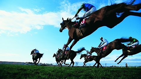 Qld govt calls for urgent inquiry into racehorse treatment | Sky News Australia