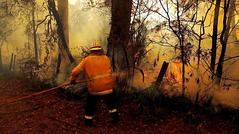 Dangerous bushfire conditions expected for NSW   Sky News Australia