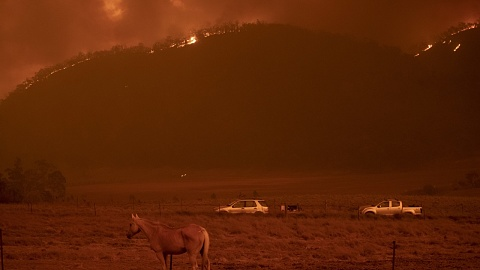 New York Times' reporting of Australian bushfires is 'regrettable and misleading' | Sky News Australia