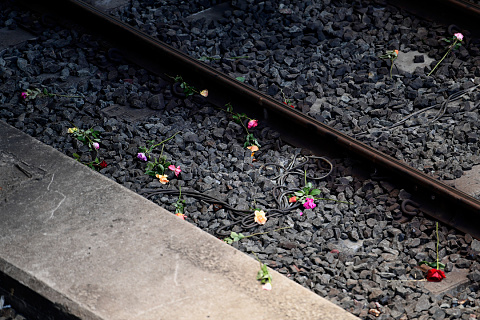 Rail tragedy remembered 43 years on | Sky News Australia