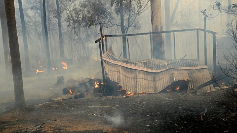 Third person confirmed dead in northern NSW bushfires | Sky News Australia