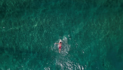 Surfing helping war heroes with PTSD   Sky News Australia