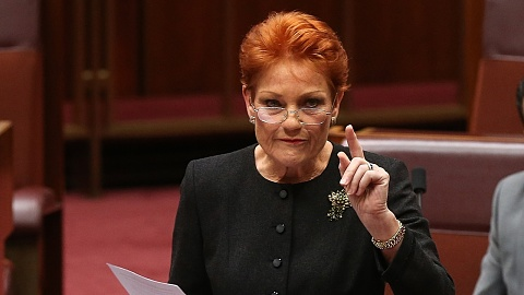 Pressure mounts to have Pauline Hanson thrown off Family Law Inquiry | Sky News Australia
