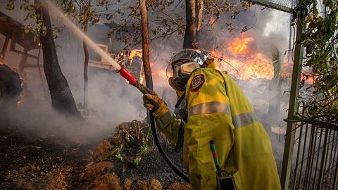 Qld axes anti-firebug task force ahead of bushfire season | Sky News Australia