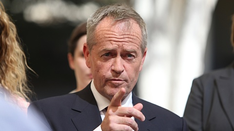 Bushfire crisis will happen again if govt doesn't form climate policy: Shorten | Sky News Australia