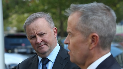 Labor shies away from 45 per cent emissions target | Sky News Australia