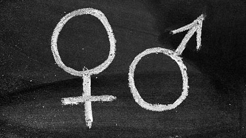 Changes to Vic gender laws is 'la la land stuff' | Sky News Australia