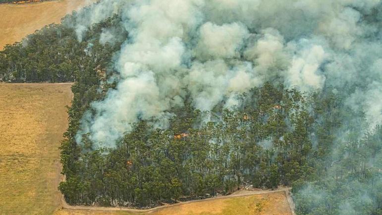 Man confirmed dead following devastating bushfires in Buchan, eastern  Victoria | Sky News Australia